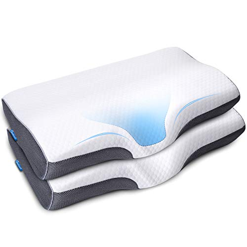 Memory Foam Cervical Pillow for Neck Shoulder Pain Relief Orthopedic Contour Pillow for Sleeping Ergonomic Bed Pillow for Side Sleeper, Back, Stomach Sleeper with Washable Pillowcase Hypoallergenic 2P