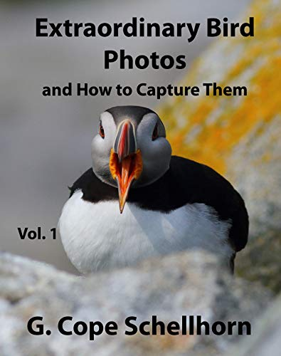 Extraordinary Bird Photos and How to Capture Them Vol. 1 (English Edition)