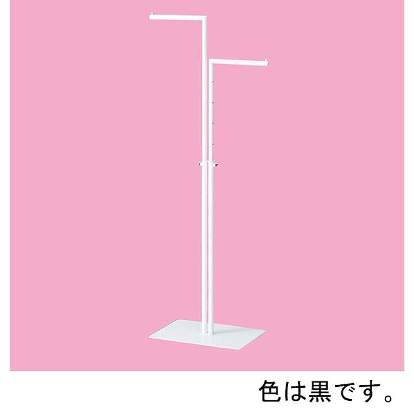 公園呪われたシーボード2WAYハンガー丸パイプ直/直 黒