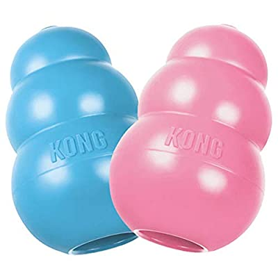 KONG KP24 Puppy Toy - Natural Teething Rubber - Fun to Chew, Chase and Fetch (Colors May Vary), 035585131214, Medium, Assorted Pink or Blue
