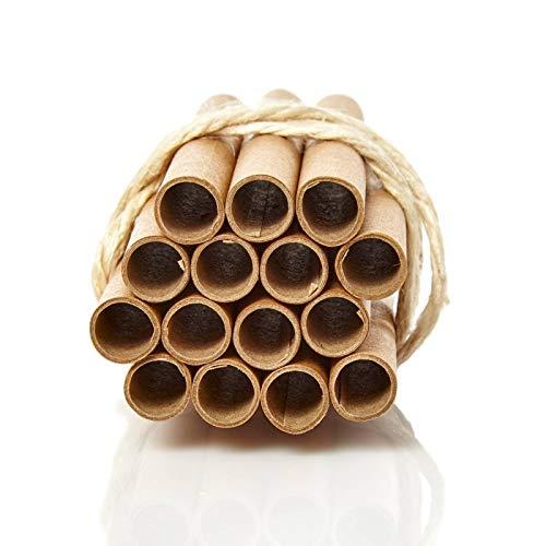 bambuswald© 100x Papierhülsen für Insektenhotels - Nisthülsen mit Ø 10mm & 10cm Länge - 100% ökologische Pappröhrchen für Insektenhotel, Niströhren & Bruthülsen als Füllmaterial für Bienenhotel