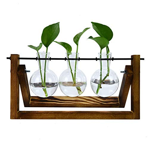 Pomeat Plant Propagation Stations Glass Planter Bulb Vase with Solid Wooden Stand and Metal Swivel...