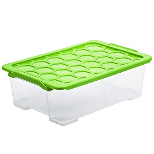 Rotho Evo Safe Keeping Aufbewahrungsbox 30l mit Deckel, Kunststoff (lebensmittelecht) BPA-frei, transparent/grün, 30l (59,0 x 39,5 x 18,5 cm)