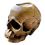 Skull Candle Holder Gothic Decor - Skeleton Oddities tealight Candle Holder, Creepy and Spooky Home Bedroom Living Room Goth Witchy Halloween Decor by JC Home Utilities