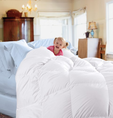 If You Found The CuddledownR 450TC Oversize King Down Comforter A Little Too Expensive For Your Budget Then This Cheaper Alternative Could Appeal To