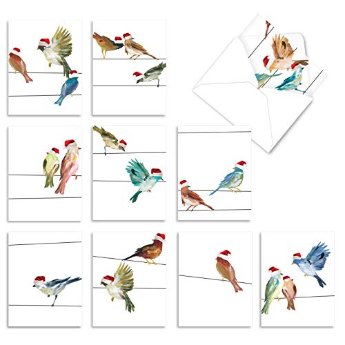 The Best Card Company - 10 Holiday Note Cards for Christmas - Festive Bulk Assortment, Boxed Notecards with Envelopes (4 x 5.12 Inch) - Holiday High Wire Birds M3318XSG