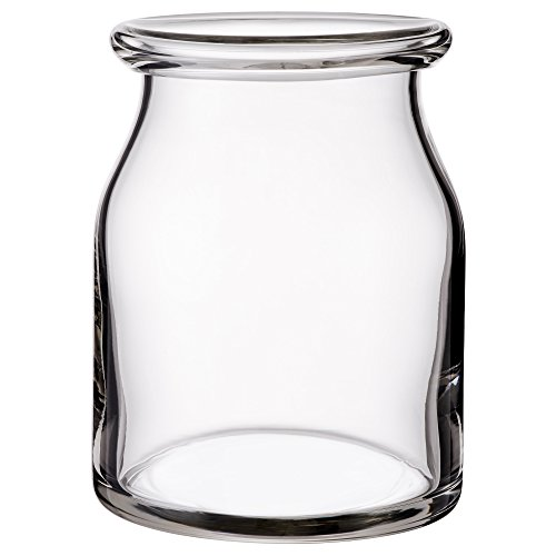 ZigZag Trading Ltd IKEA BEGARLIG - wazon przezroczyste szkło