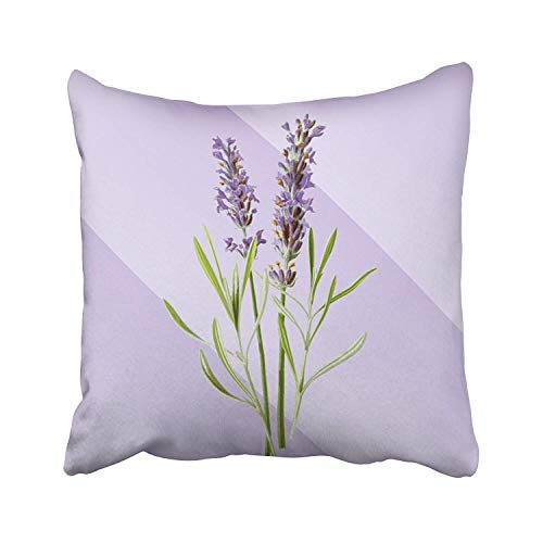 Suesoso Decorative Cushion Pillows Case, 18' X 18' Lavender Pattern Home Decor Indoor Throw Pillow Cover Cases Sofa Bed Car Living Lavender Pattern