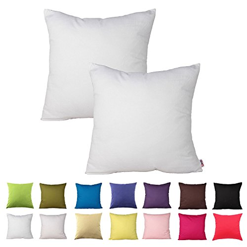 Blank Pillow Covers