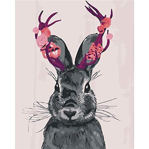 Pintura al óleo de Conejo Pintura de Imagen de Bricolaje Color por número Pintura 40X50cm Sin Marco
