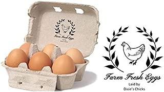 Best guardian egg cartons Reviews