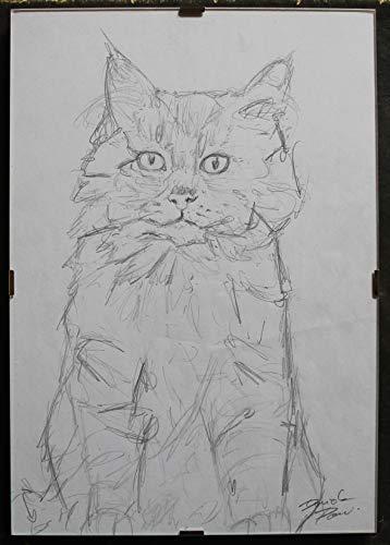 Die Katze-Bleistiftzeichnung auf Papier, handgefertigt von Davide Pacini, Maße cm 21x30 cm + Rahmen für den Tag. Hergestellt in Italy.Toscana, Lucca.Erstellen Sie Davide Pacini.