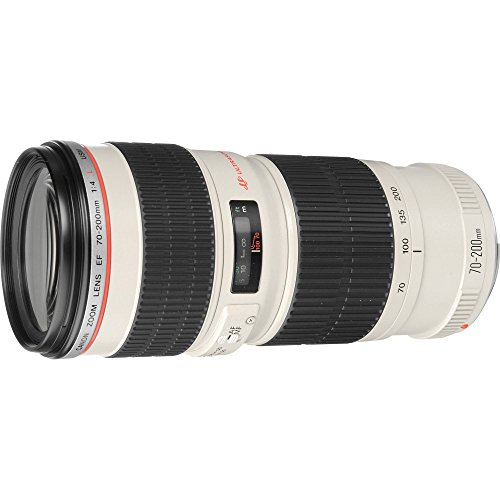 Canon EF 70 200mm f/4L USM   Objetivo para Canon (Distancia Focal 70 200mm, Apertura f/4 32, Zoom óptico 2.8X,diámetro: 67mm) Blanco