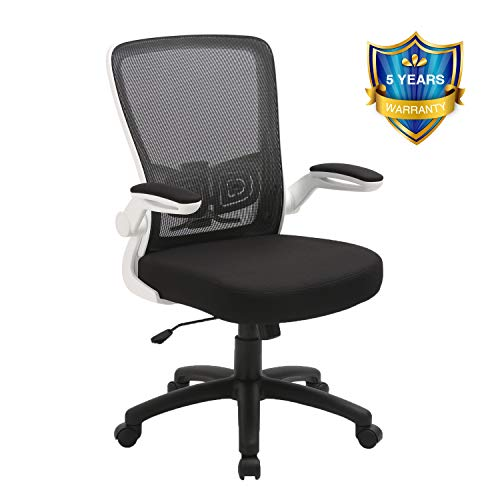 Office Chair, ZLHECTO Ergonomic Desk Chair with Adjustable Height and Lumbar Support, High Back Mesh...
