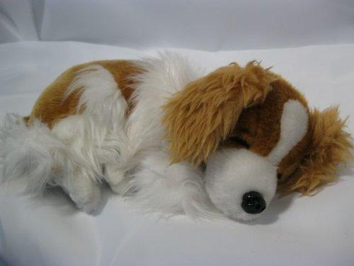 'Plüschhund liegend, Länge ca. 30 cm, SENSORAKTIV bei Lichtveränderung fängt der niedliche Hund an zu schnarchen ,danach hebt er den Kopf und fängt an zu winseln. Das Atmen kann man sehr schön beobachten