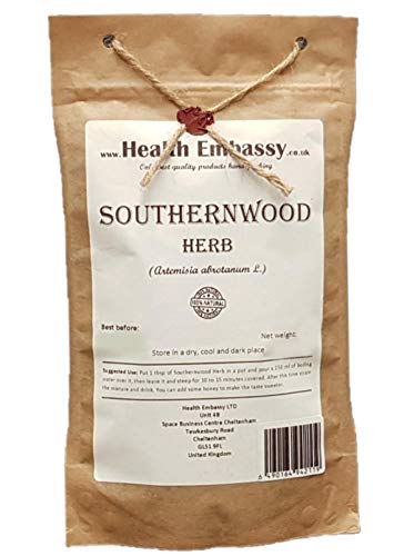 Abrotano Erba (Artemisia abrotanum) / Southernwood Herb...