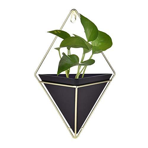 Dough.Q Wand Blumentopf Set Keramik Blumenkübel Für Drinnen Und Geometrische Deko - Übertopf Für Zimmerpflanzen, Sukkulenten, Luftpflanzen, Kakteen, Kunstpflanzen Und Mehr