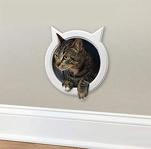 The Kitty Pass Wall Entry Cat Door