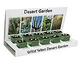 Cactus & Suculents Eco Grow Kit 100% reciclable 5 variedades para cultivar de semillas, fabricado con materiales 100% reciclables