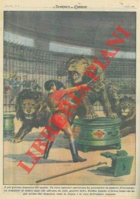 Nella gabbia dei leoni il piu' giovane domatore di 12 anni affronta quattro belve.