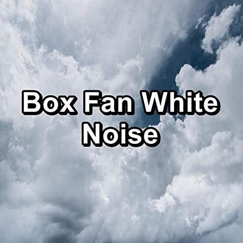 Granular, Granular Brown Noise & Granular White Noise�