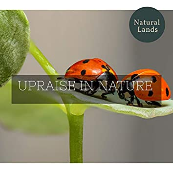 Upraise in Nature
