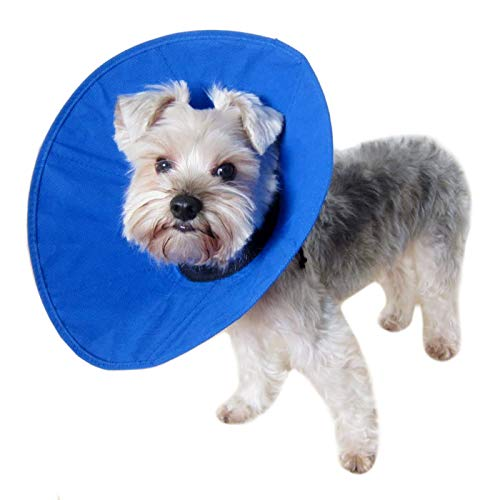 Alfie Pet - Cobalt Recovery Collar (for Dogs & Cats) - Color: Blue, Size: M