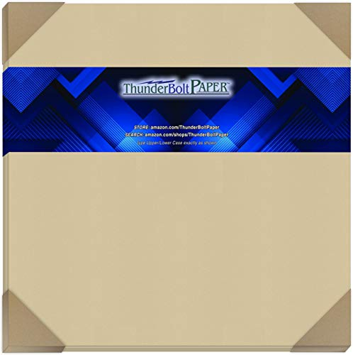 25 Desert Tan Fiber Finish Cardstock Paper Sheets - 12 X 12 Inches Scrapbook Album|Cover Size � 80 lb/Pound Cover|Card Weight 216 GSM - Natural Fiber with Darker Specks - Slightly Rough Finish
