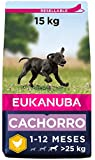 Eukanuba Alimento seco para cachorros de raza grande, rico en pollo fresco...