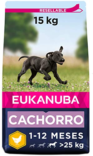 Eukanuba Alimento seco para cachorros de raza grande, rico en pollo fresco 15 kg ✅