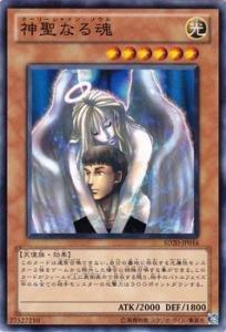 遊戯王カード 【 神聖なる魂 】 SD20-JP016-N 《ロスト・サンクチュアリ》