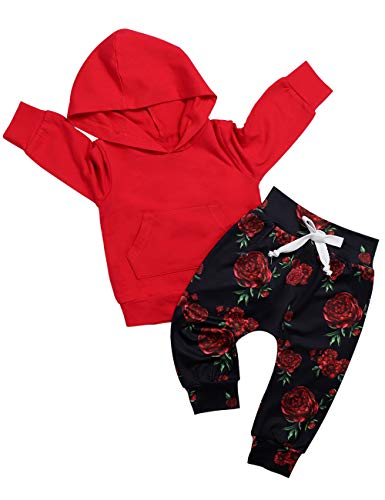 Baby Girl Clothes Long Sleeve Hoodie Sweatshirt Floral Pants with Headband Outfit Sets 6-12 Months