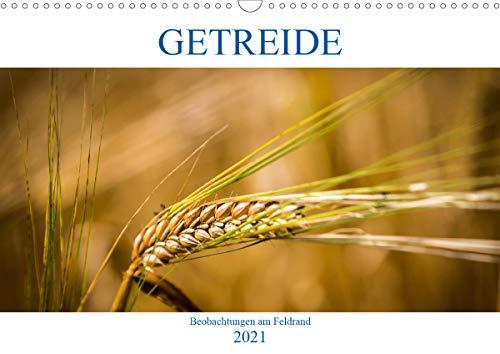Getreide - Beobachtungen am Feldrand (Wandkalender 2021 DIN A3 quer)