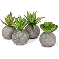 4-Count Abbott Collection 27-Mojave/10 Succulents in Rocks