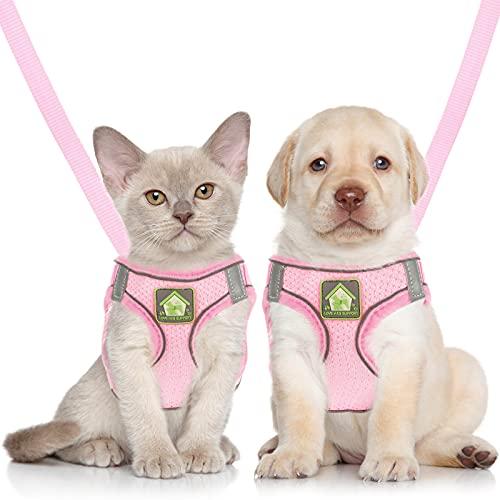 Sumind Set di Imbracatura e Guinzaglio per Gatto/Cucciolo Imbracature Gilet Regolabili in Morbida Rete Antifuga Cinghia Pettorale a Rete Traspirante per Cani Gatti Animali Domestici, XS (Rosa)