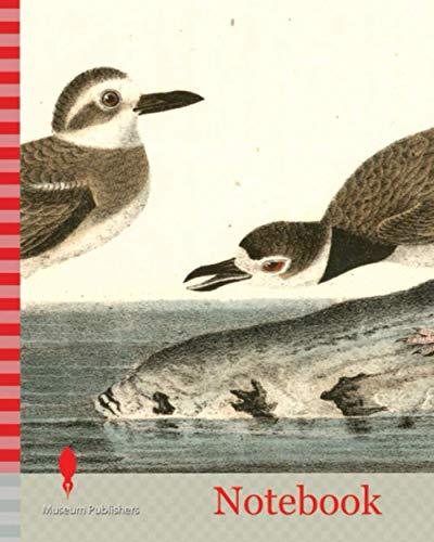 Notebook: Wilson's Plover. 1. Male. 2. Female., Audubon, John James, 1785-1851