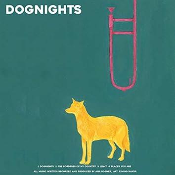 Dognights