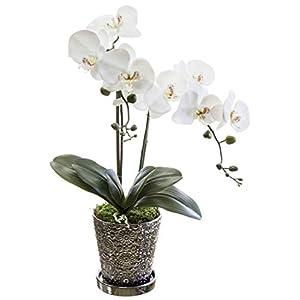 Orquidea Artificial, Phalaenopsis, Maceta de Cerámica, Ideal para Decoración de Hogar, Tacto Natural (Oorquidea 8)
