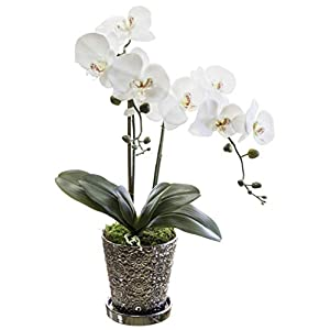 Orquidea Artificial, Altura 65 cm, Phalaenopsis, Maceta de Cerámica, Ideal para Decoración de Hogar, Tacto Natural…