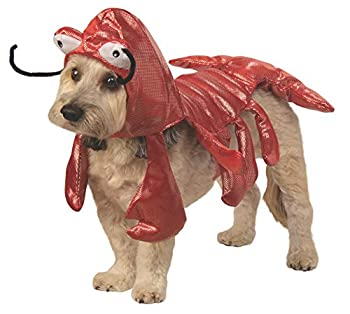 Best lobster dog costumes Reviews