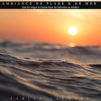 Ambiance de plage & de mer (Son de vague & océan pour se détendre ou méditer)