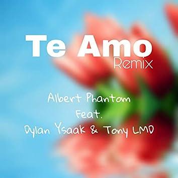 Te Amo (Remix)