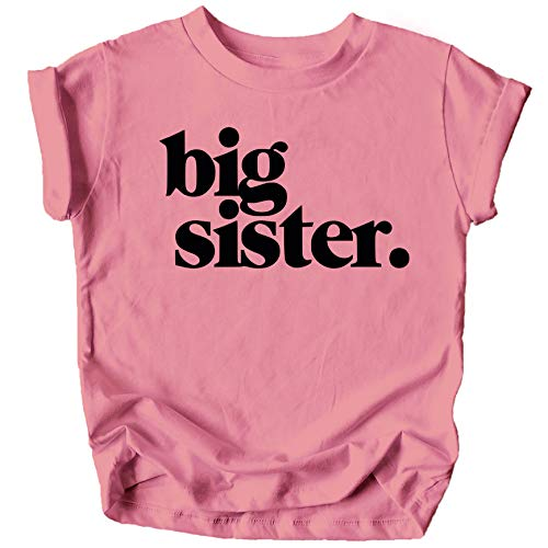 Bold Big Sister Colorful Sibling Reveal Announcement T-Shirt for Baby and Toddler Girls Sibling Outfits Mauve Shirt 3T