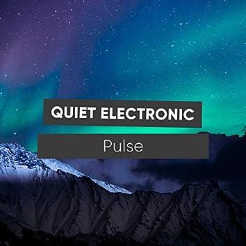 Quiet Electronic Pulse, Vol. 1