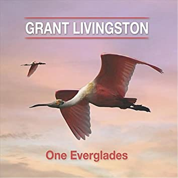 One Everglades
