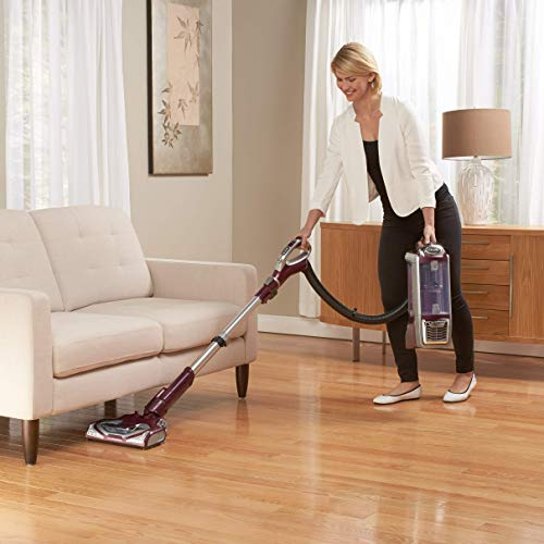 Shark Rotator Powered Lift-Away TruePet Upright Corded Bagless Vacuum for Carpet and Hard Floor with Hand Vacuum and Anti-Allergy Seal (NV752), Bordeaux (Renewed)
