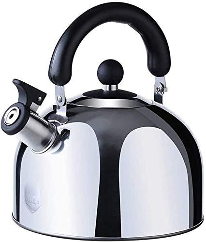 Bouilloire induction 3L bouilloire ustensiles de cuisine en acier inoxydable 304 Sifflet Bouilloire grande capacité Cuisinière à gaz Gaz Argent Universal WHLONG
