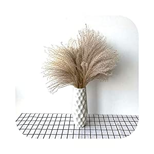 Pampas Grass Decor Natural Dried Flowers Feather Flowers Decoration Home decorationwedding Road Lead Flowers with Plastic vase-20pcs with vase-S