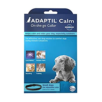 ADAPTIL Calming Collar for Dogs A Constant Calm Anywhere You Go