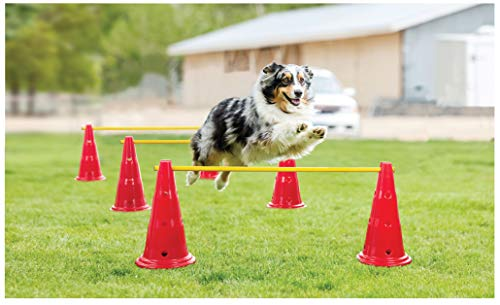 FRISKY FRIENDS Dog Agility Course Equipment- Hurdle Cone Set – Obstacle Agility Training Kit for Doggie, Pet Outdoor Backyard Game